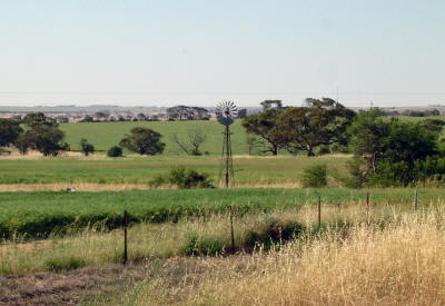 View from the Macpherson Homestead in Carnamah